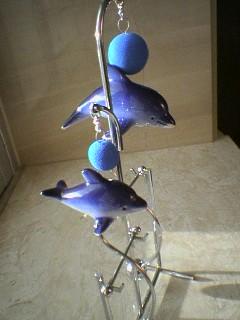 dolphin041020_163001