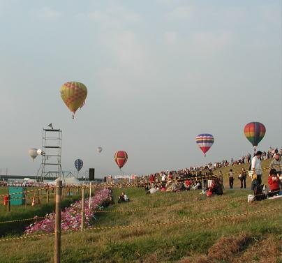 severalballoon.jpg