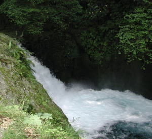 Kikuchimizu07