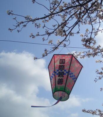 Sakuralantern08
