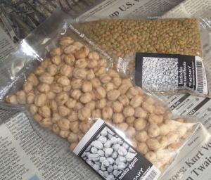 Beans07