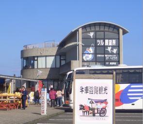 Cranecenter2